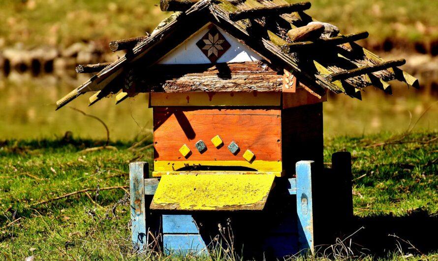 Le futur jardin des abeilles plébiscité